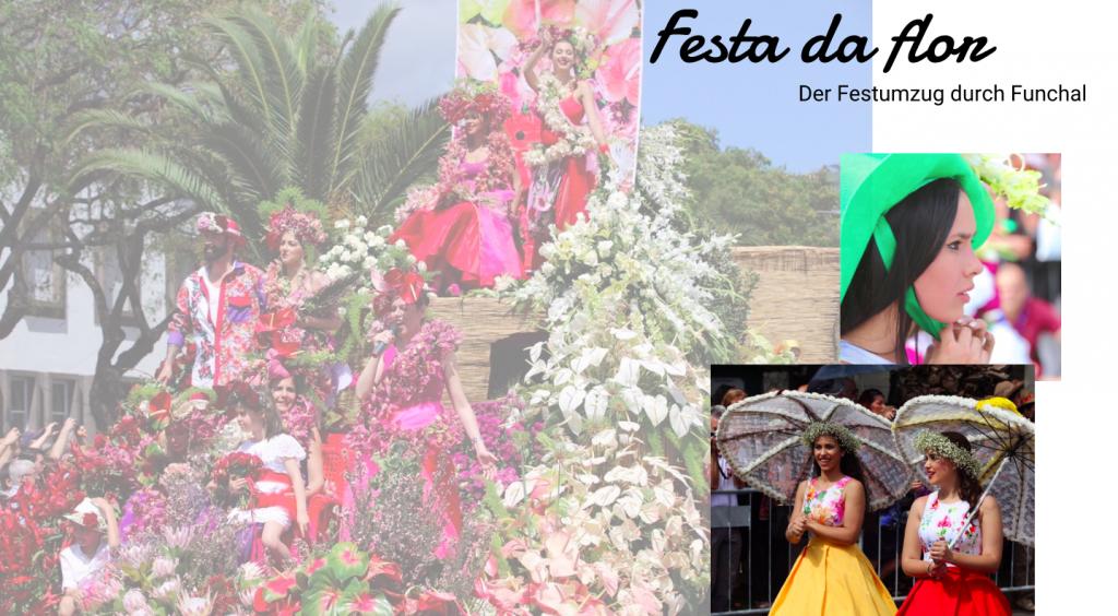 Madeira Festa de Flor