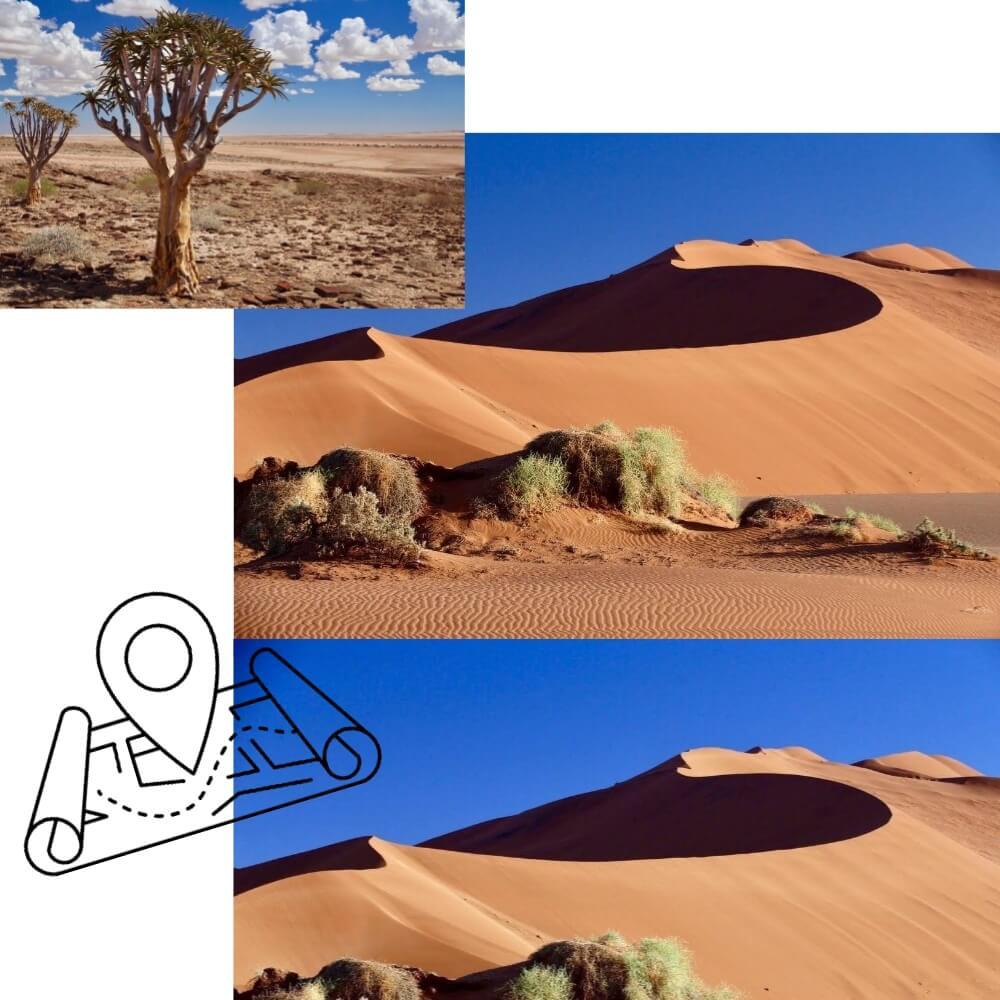 wüste collage